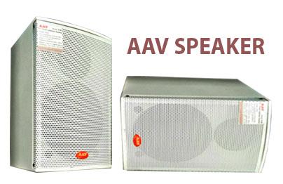 Loa hộp 40W AAV HS-40 tối ưu cho âm thanh hội trường, sân khấu, khu vui chơi giải trí, tổ chức sự kiện…