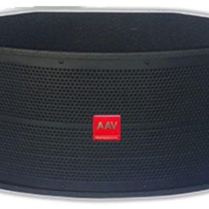 Loa karaoke bass 30cm chuẩn, giá gốc AAV KS-930