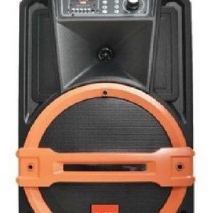 Loa kéo Sport AAV-Bass 30